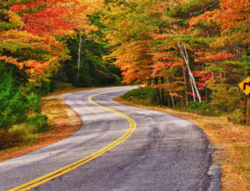Driving Into Autumn & Fall Car Care Tips